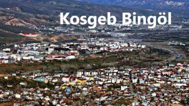 Kosgeb Bingöl