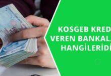 Kosgeb Anlaşmalı Kredi Veren Bankalar Hangileri ?
