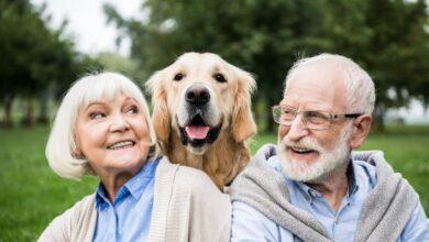 erken-emekli-olma-kosullari
