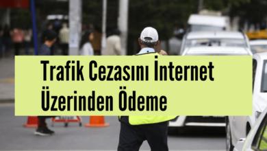 İnternet'ten Trafik Cezası Nasıl Ödenir