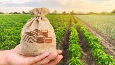 KOSGEB Çiftçi Desteği Nasıl Alınır