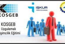 Uygulamalı Girişimcilik Eğitimi (E-Devlet)